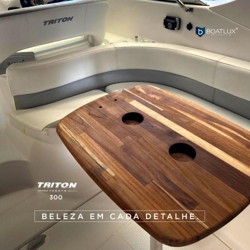 Triton 300 ano 2015 : Foto 3